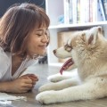 Security tips living alone , Woman and Dog